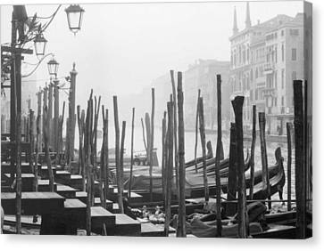 Misty Morning In Venice Canvas Print by Dorothy Berry-Lound