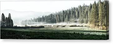 Misty Morning In Yosemite Canvas Print by Jane Rix