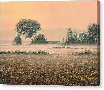 Salmon Canvas Print - Misty Morning by James W Johnson