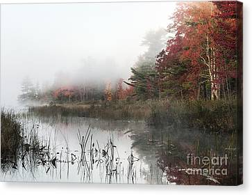 Misty Morning Canvas Print by John Greim