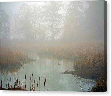 Canvas Print featuring the photograph Misty Morning by Jordan Blackstone