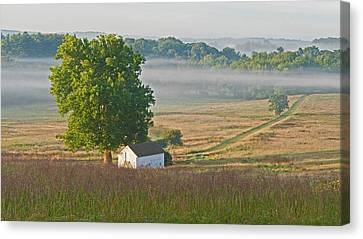 Misty Morning Canvas Print by Michael Porchik