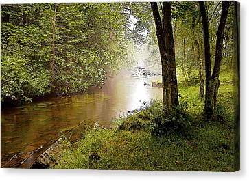 Misty Morning On A Mountain Stream Digital Art Canvas Print