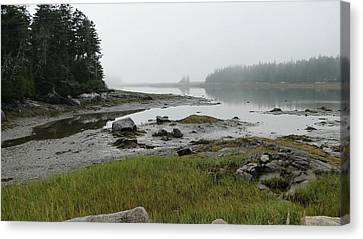 Misty Morning On The Rocky Coast Of Maine Canvas Print