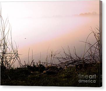 Canvas Print featuring the photograph Misty Morning by Robyn King