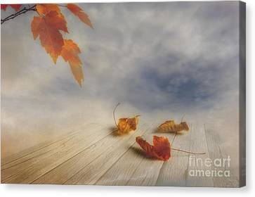 Misty Morning Canvas Print by Veikko Suikkanen