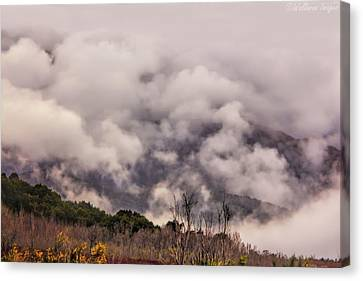 Misty Mountains Canvas Print by Wallaroo Images