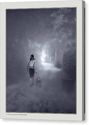 Misty Path Canvas Print by Pedro L Gili