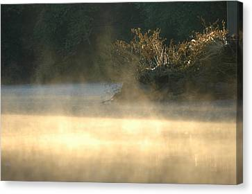 Misty Sunrise Canvas Print by Robert Culver