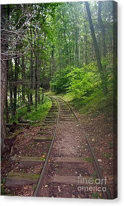 Misty Train Tracks Canvas Print by Doc Braham