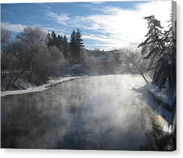 Misty Winter View Canvas Print by Carolyn Reinhart