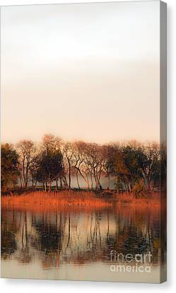 Misty Winter's Morning Canvas Print by Angela DeFrias