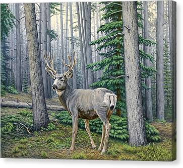 Misty Woods-buck Canvas Print by Paul Krapf