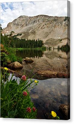 Mitchell Lake Reflections Canvas Print