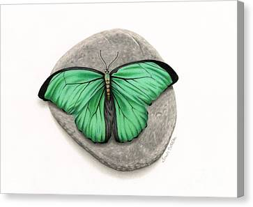 Mito Awareness Butterfly- A Symbol Of Hope Canvas Print by Sarah Batalka
