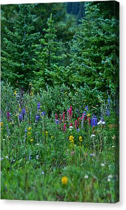 Canvas Print featuring the photograph Mixed Flowers by Jeremy Rhoades