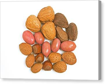 Mixed Nuts Canvas Print by Ann Pickford