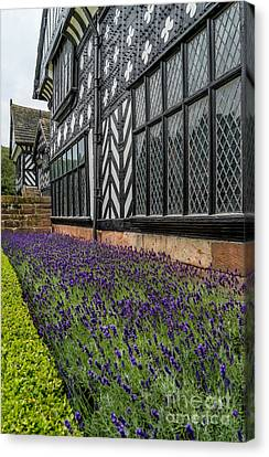 Moat Of Lavender Canvas Print by Adrian Evans
