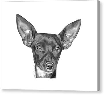 Canvas Print featuring the drawing Mocha -036 by Abbey Noelle