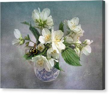 Sweet Mock Orange Blossom Bouquet With Bumble Bee  Canvas Print