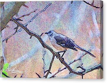 Canvas Print featuring the photograph Mocking Bird by Ludwig Keck