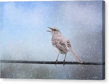 Mockingbird In The Snow Canvas Print by Jai Johnson