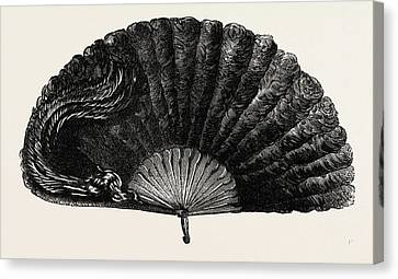 Ostrich Fan Canvas Print - Modern Ostrich Feather Fan by English School