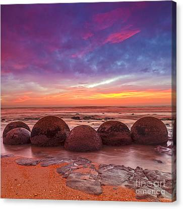 Moeraki Boulders Otago New Zealand Canvas Print by Colin and Linda McKie