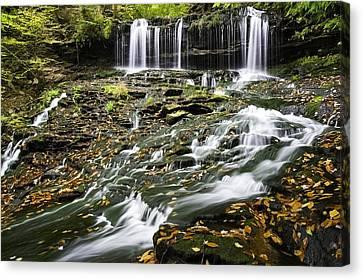 Mohawk Falls 1 Canvas Print
