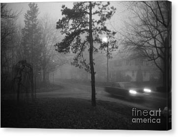 Canvas Print featuring the photograph Moisture by Steven Macanka