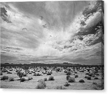 Mojave National Preserve Canvas Print by Mike Herdering