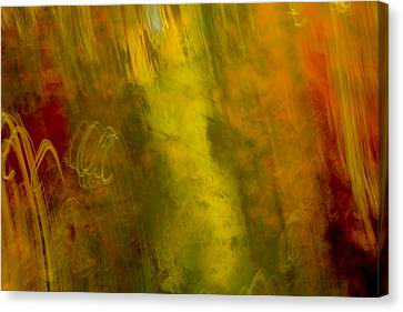 Canvas Print featuring the photograph Mojo by Darryl Dalton