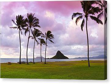 Mokolii Palms Canvas Print by Sean Davey
