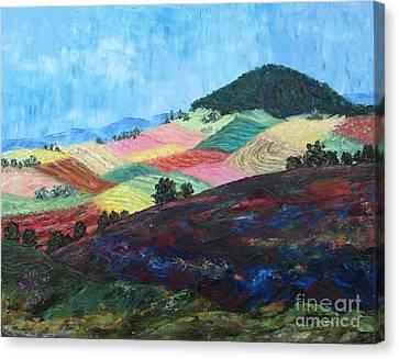 Mole Hill Patchwork - Sold Canvas Print by Judith Espinoza