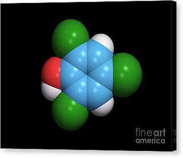 Molecule Of A Component Of Tcp Canvas Print