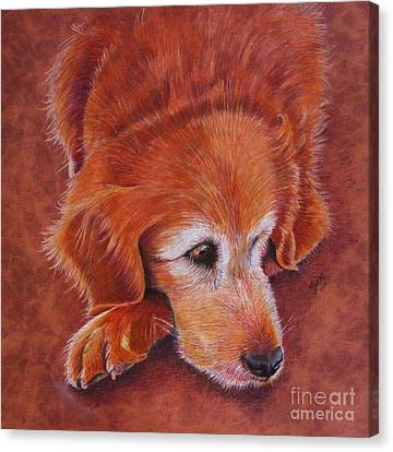Mollie Canvas Print by Marilyn Smith