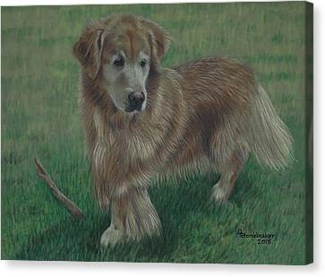 Molly And Her Stick Canvas Print by Debbie Stonebraker