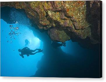 Molokini, Maui, Hawaii, Usa Scuba Diver Canvas Print by Stuart Westmorland