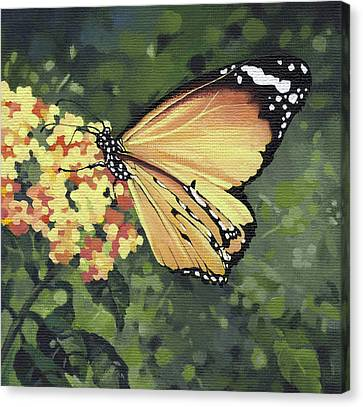 Monarch Butterfly Canvas Print by Natasha Denger