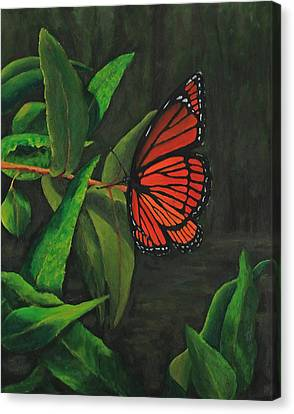 Viceroy Butterfly Oil Painting Canvas Print