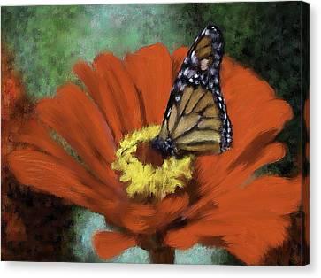 Monarch Landing Canvas Print by Renee Skiba