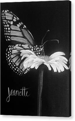 Monarch On A Daisy Canvas Print