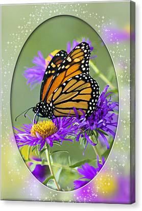 Monarch On Astor Canvas Print by Judy  Johnson