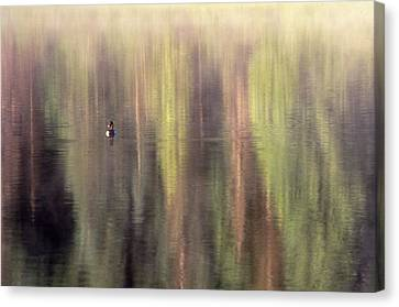 Monet's Duck Canvas Print by Ken Dietz