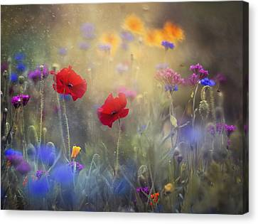 Monet's Garden I Canvas Print by Magda  Bognar