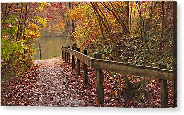 Monet's Trail Canvas Print by Debra and Dave Vanderlaan