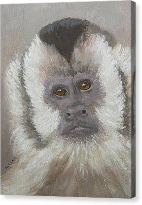Canvas Print featuring the painting Monkey Gaze by Margaret Saheed