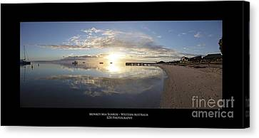 Monkey Mia Western Australia Canvas Print by Diagnostic Photography