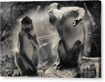 Canvas Print featuring the photograph Monkeys In Freedom by Christine Sponchia