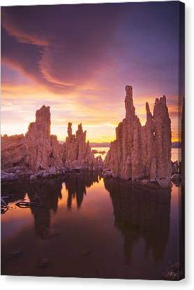 Mono Magic Canvas Print by Peter Coskun